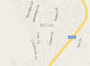 Milas Haritası